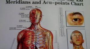 Übersicht von Akupunkturpunkten